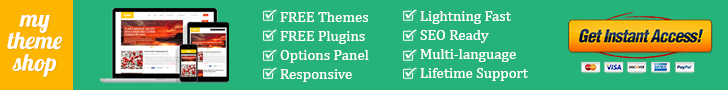 mythemeshop point theme review